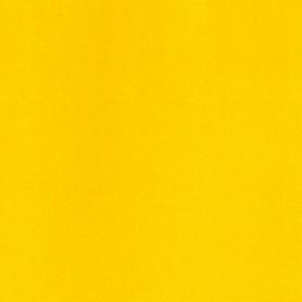 018 - Giallo permanente limone