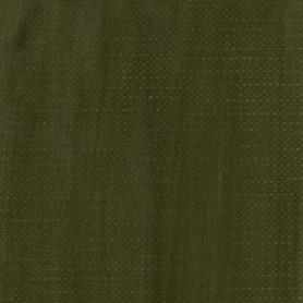 021 - Terra verde antica