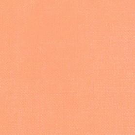 008 - Carnicino