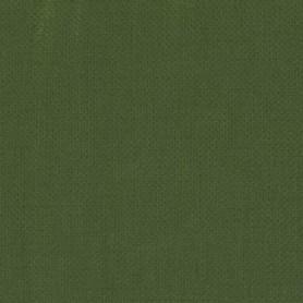 043 - Verde ossido di Cromo