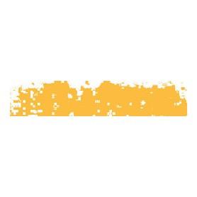 028 - Giallo vero 3 scuro 004h