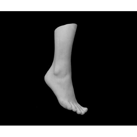 Piede femminile - Particolare anatomico - 116m