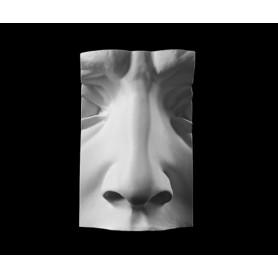 Naso - Particolare anatomico - 125n