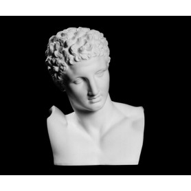 Hermes di Prassitele - Busto - 138a