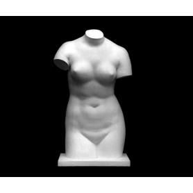 Venere de' Medici - torso - 142a