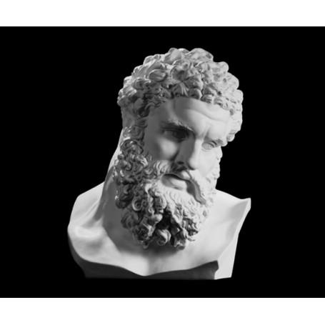Ercole Farnese - testa - 146a