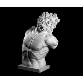 Laocoonte - torso - 152a